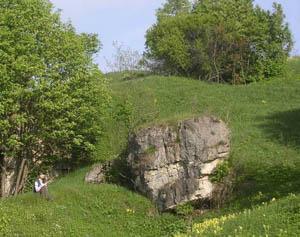 скалы возле Лисьих Нор