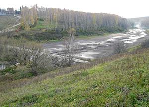 водохранилище возле Осетровского лесничества
