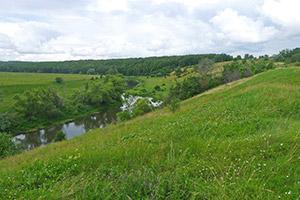 долина Осетра у Малых Белыничей