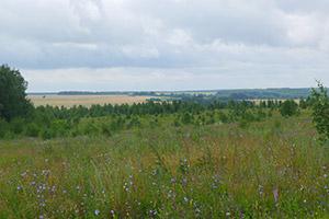 край Рязанской области