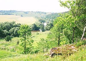долина Осетра ниже Ратькино